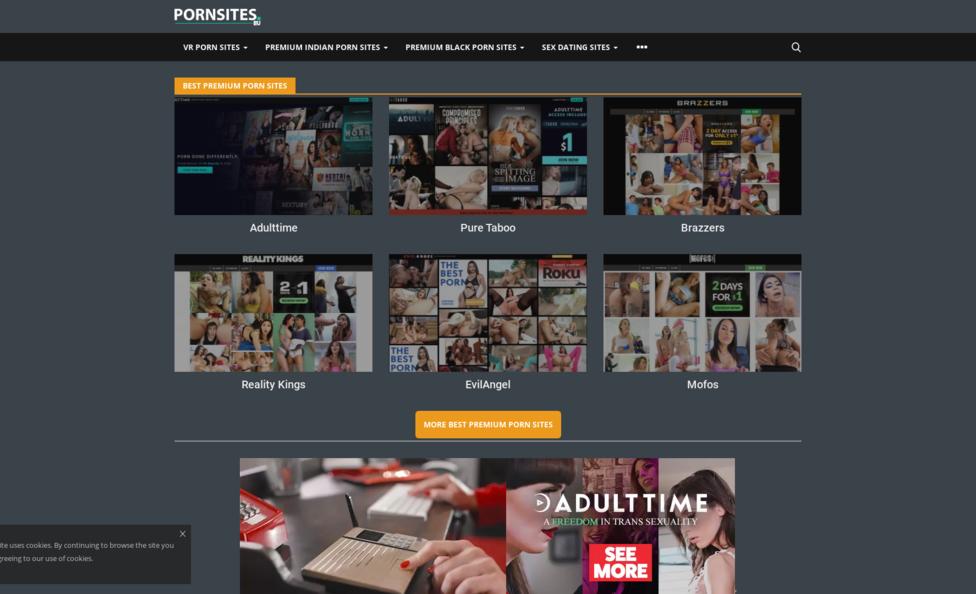 The Porn Sites